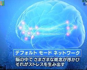 ■頭蓋仙骨仙骨療法の勧め。デフォルトネットワーク脳の活性について