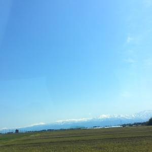 富山の恵み