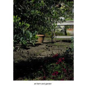art farm & gardenの庭