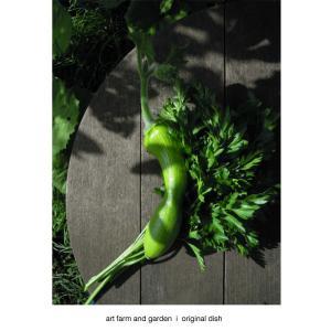最後のズッキーニ/art farm & garden