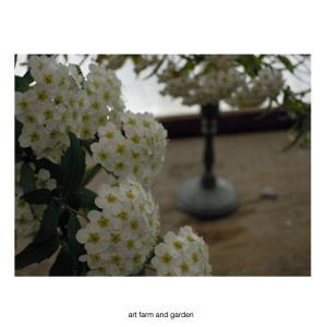 5月のテーブル/art farm & garden