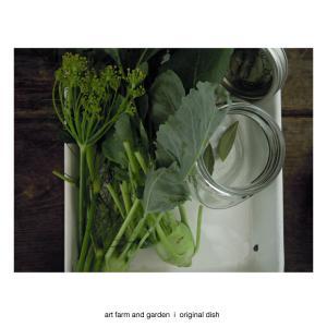 コールラビのピクルス/[アート農場と庭]のアートフード