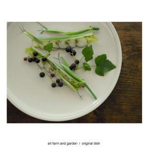 ブラックカラントのサラダ/[アート農場と庭]のアートフード