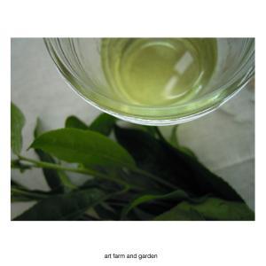 茶葉のオイル/art farm & garden