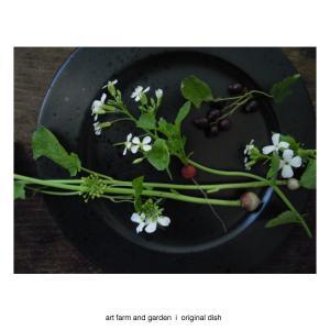 black&white  /art farm & garden