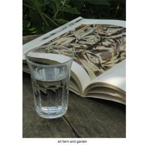 NYのギャラリーと夏の庭/art farm & garden