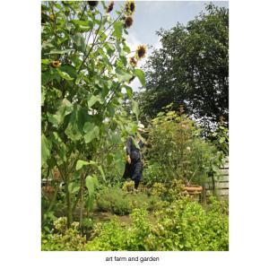 8月の夏の庭/art farm & garden