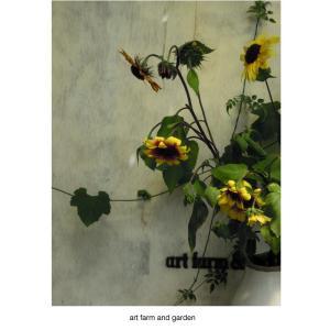 グリーンハウスのひまわり/art farm & garden