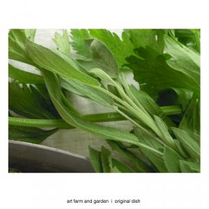 香る野菜/[アート農場と庭]のアートフード