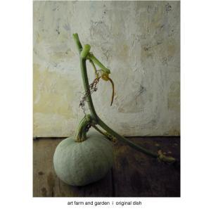 南瓜とクリームチーズ/art farm & garden