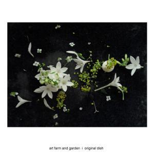 花のプレート/[アート農場と庭]のアートフード