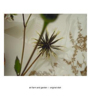 種の季節/art farm & garden