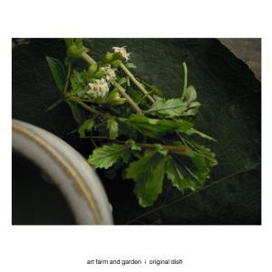 豆乳ヨーグルト/[アート農場と庭]のアートフード