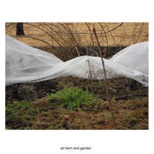 日曜日の庭 /art farm & garden