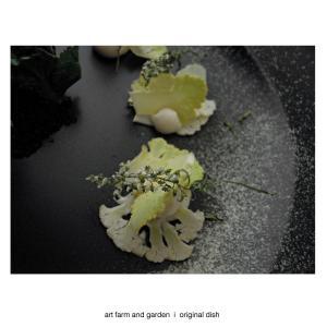 収穫野菜ロマネスコのサラダ/[アート農場と庭]のアートフード
