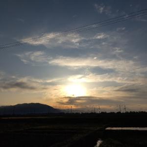 ボンヤリ~朝陽~