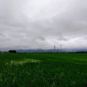大雨の注意報~