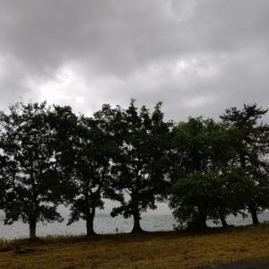梅雨の空模様~金曜日