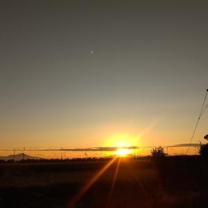 今日も朝陽から~水曜日