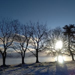 薄く雪~冬晴れ~月曜日