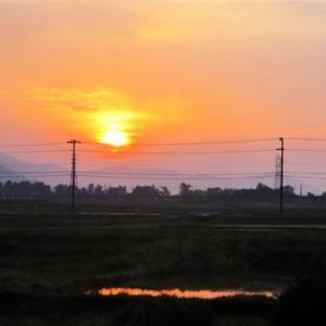 皐月初日・・ぼんやり朝陽・・