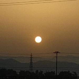 みどりの日~朝陽