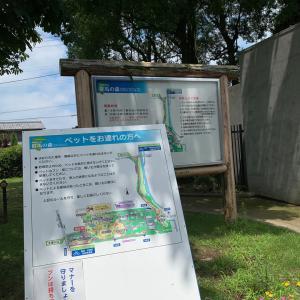 群馬県立歴史博物館へ