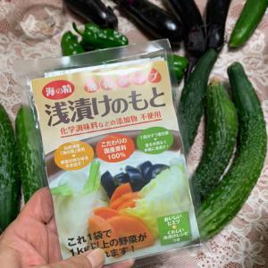 液体浅漬けのもとで夏野菜を食べる