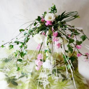 雪解け 〜 春の花々