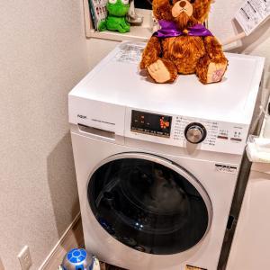 ぬいぐるみ洗濯中…ビーストがベルを心配している