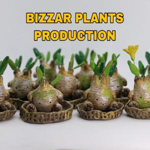 BIZZAR PLANTS PRODUCTION