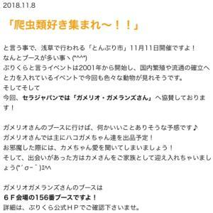 株式会社セラジャパン様のご協賛ありがとうございました!