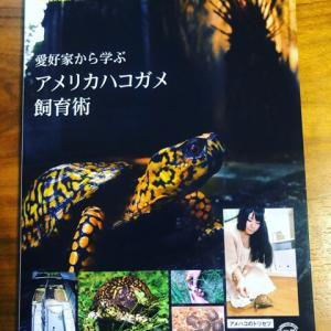 書籍「愛好家から学ぶアメリカハコガメ飼育術」入荷