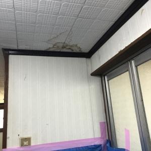 DIYにっき 汚画像あり 天井と床を壊してみた。
