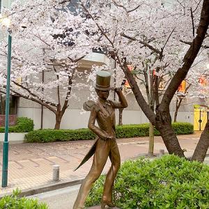 花のみちの桜 part2