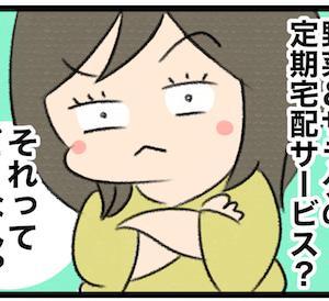 楽天の100%オーガニック野菜&サラダ定期宅配サービスRagri(ラグリ)ってどーなん?