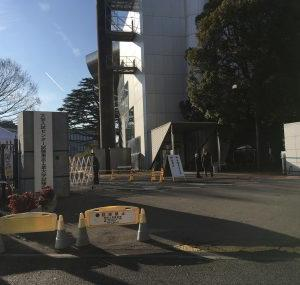 駒沢までおもふくおじ散歩🐾🐾彡