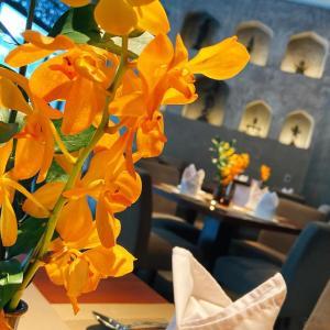 ホーチミンのインド料理シーンの中でもお洒落さと美味しさと使い勝手の良さを兼ね備えたこちら、ちょい飲みにもいいぞ! ~ Tandoor Indian Restaurant