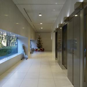 職場ビルのクリスマスツリー