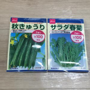 【ダイソー】2つで100円の種