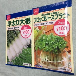【ダイソー】2つで100円の野菜の種