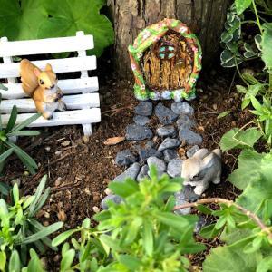 フェアリードアに小径をプラス♡箱庭作り《ガーデニング》小さな世界
