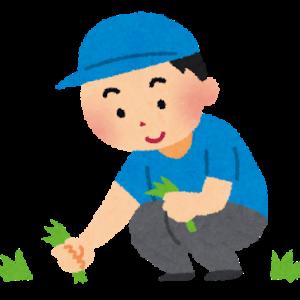 草刈りなんてテキトーに刈って除草剤撒いときゃいいんだよ。