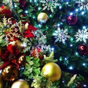 今日はクリスマス…
