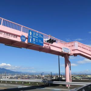 サクラエビ異変、蒲原歩道橋