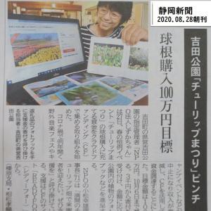 来春も吉田公園に10万本のチューリップを咲かせたい!
