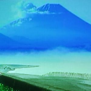 デコトラの鷲(しゅう)其の参  恋の花咲く清水港 5