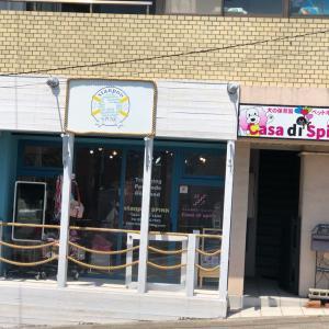 ☆stanpoo SPINK店☆リニューアルオープンイベント・つづき〜☆