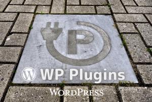 GutenbergでYoutube動画の埋め込みをした際、Google PageSpeed Insightsのスコアが低下するのを防ぐプラグイン「Lazy Load for Videos」