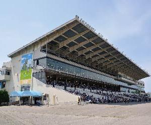 金沢競馬の八百長疑惑、全国紙でも取り上げられる